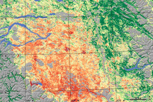 Forest damage by mountain pine beetle in interior British Columbia, NASA image